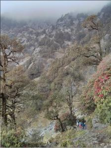 one of the best places to visit in dharamsala