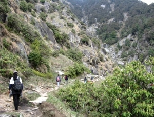 trekking triund in india's himachal pradesh province